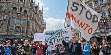 monsanto, protestas