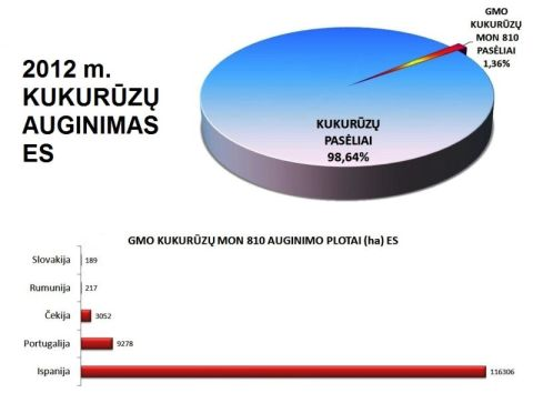 2012_m_ES_AUGINAMI_KUKURUZU_PLOTAI